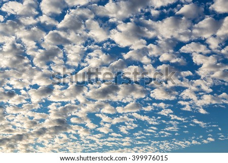 Beautiful feathery evening clouds in the sky - stock photo
