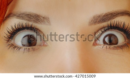 Beautiful female brown eyes with long eyelashes. Emotions. Close up brown woman eyes looking at camera. She surprised and opened her eyes. Beautiful girl eyes and eyelashes. Attractive female face. - stock photo