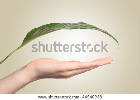 Beautiful female hand and green sheet