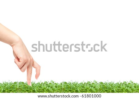 Beautiful female hand walking on grass with lots of copyspace