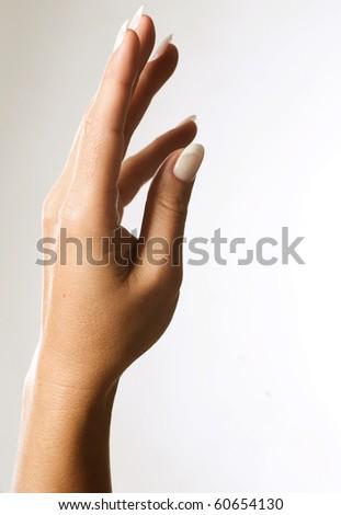 Beautiful Female Hands - stock photo