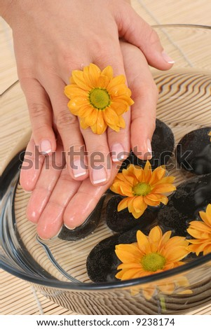 beautiful female hands and bowl of pure water with daisy