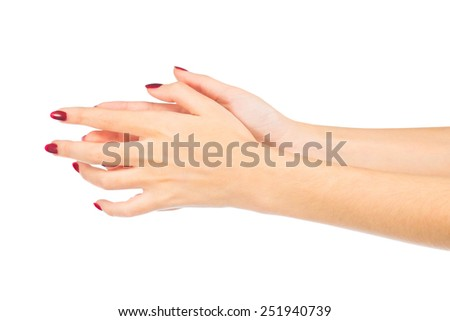 Beautiful female hands are isolated on a white background - stock photo