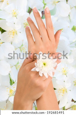 Beautiful female hands on a background of flowers - stock photo