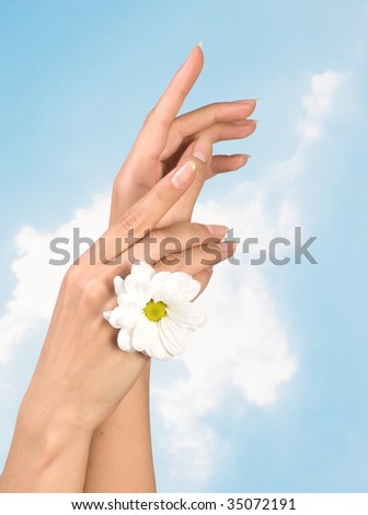 beautiful female hands with perfect manicure and smooth skin - stock photo