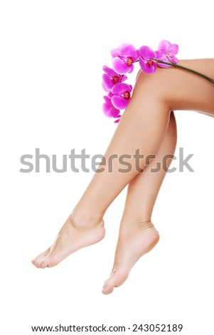 Beautiful female legs and an orchid flower. - stock photo