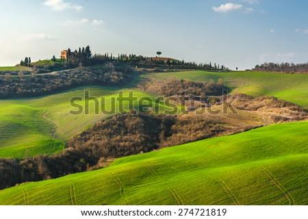 Beautiful fields, hills of Tuscany, Italy - stock photo