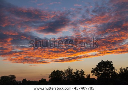 Beautiful fiery sunset sky over silhouettes of trees.