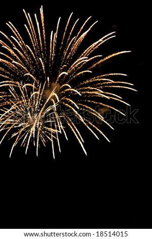 Beautiful fireworks exploding over a dark night sky.  Plenty of copy space. - stock photo