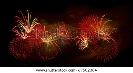 Beautiful fireworks in the night. - stock photo