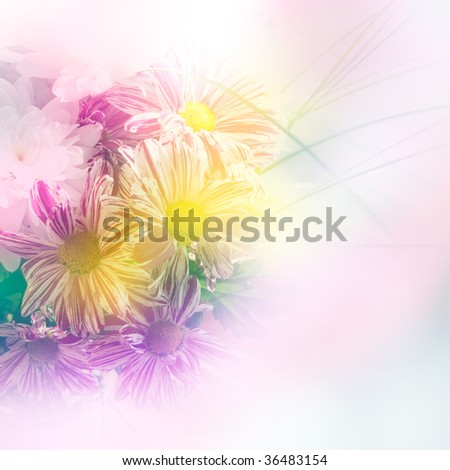 beautiful floral background made with color filters
