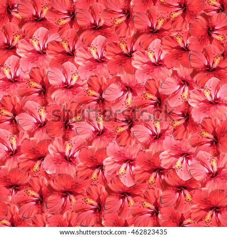 Beautiful floral background with red hibiscus flower