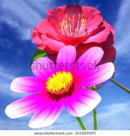 Beautiful Flower against the sky  - stock photo