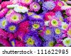 Beautiful flower bouquet at farm market - stock photo