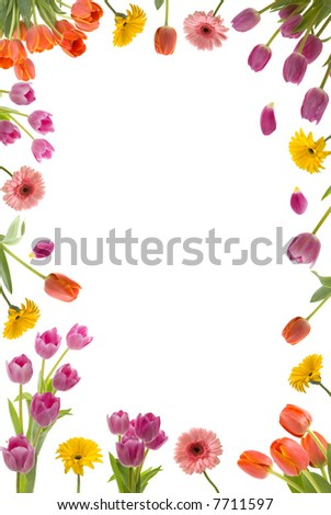 Beautiful flower frame - stock photo