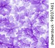 beautiful flowers background design - stock vector