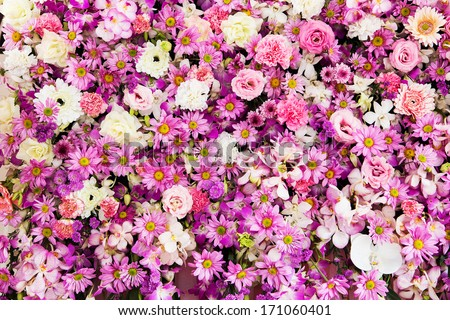 Beautiful flowers background for wedding scene - stock photo