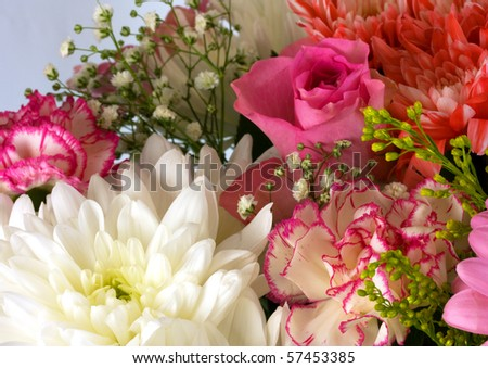 Beautiful flowers for weddings and home decoration