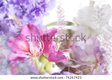 beautiful flowers made with soft focus - stock photo