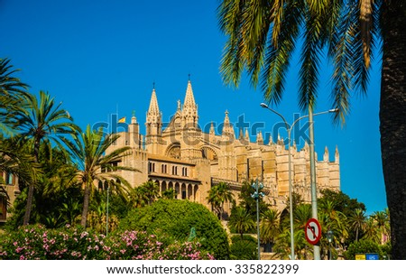 Beautiful flowers on the bushes in Palma de Mallorca. Cathedral building viewed through lush greenery of the island. Big gothic church beside palm trees under the blue sky at sunset. - stock photo