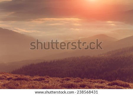 Beautiful foggy landscape in the mountains. Fantastic morning glowing by sunlight. Soft filter and Instagram toning effect.  - stock photo