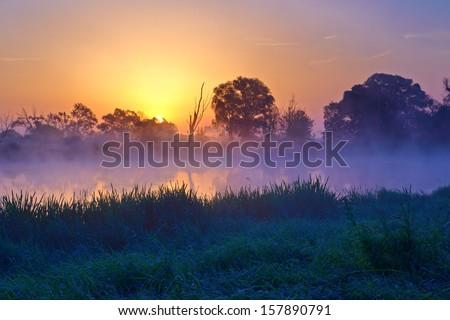 Beautiful foggy sunrise over the Narew river. Mazovia, Poland. - stock photo