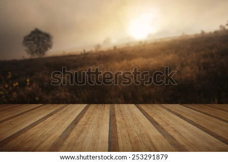 Beautiful forest landscape of foggy misty forest in Autumn Fall with wooden planks floor - stock photo