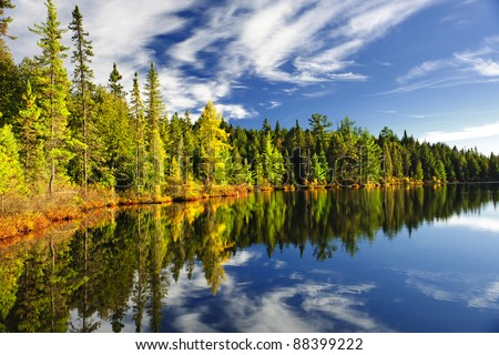 Beautiful forest reflecting on calm lake shore at Algonquin Park, Canada - stock photo