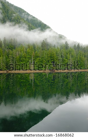 beautiful forested coastline, ringed in cloud in Alaska - stock photo