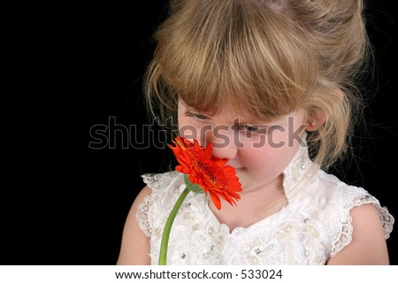 Beautiful four year old girl smelling flower. Shot in studio over black. Wearing white pageant dress and hair up. - stock photo