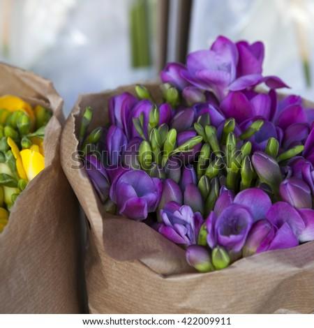 Beautiful freesia flowers bouquet - stock photo
