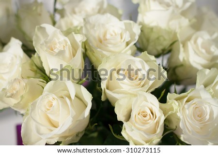 beautiful fresh bouquet of delicate white roses