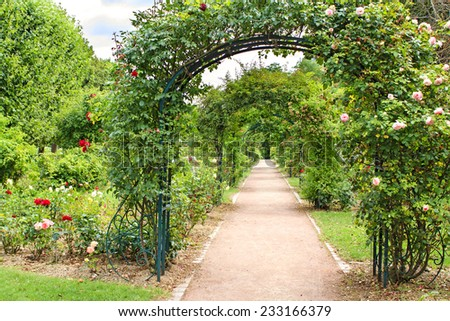 Beautiful fresh green natural archway made of blooming plants, vanishing point perspective in Jardin des Plantes garden in Paris - stock photo