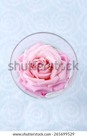 Beautiful fresh rose in glass on color wallpaper background - stock photo