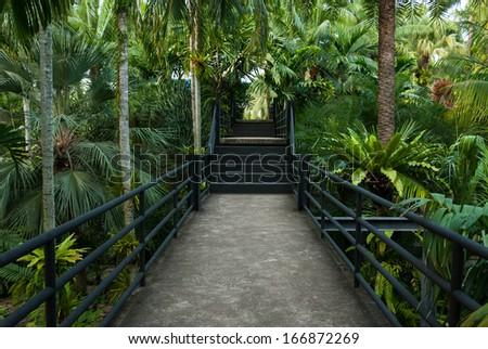 beautiful garden corridor - natural open corridor in botanic park - stock photo
