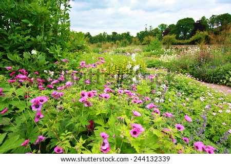 Beautiful garden full of flowers  - stock photo