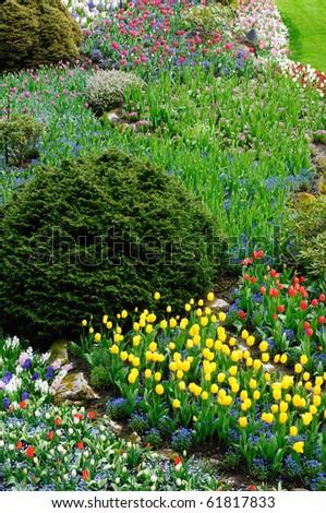 Beautiful garden in spring, victoria, british columbia, canada - stock photo
