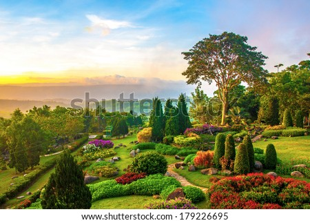 Beautiful garden of colorful flowers on hill in the morning - stock photo