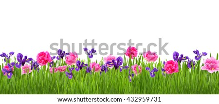 Beautiful garden with flower white copy space for your text