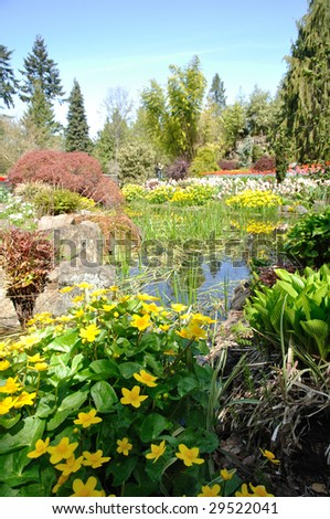 beautiful garden with many flowers - stock photo
