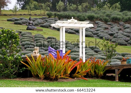 Beautiful Gardens Alii Kula Lavender Farm Maui Hawaii - stock photo
