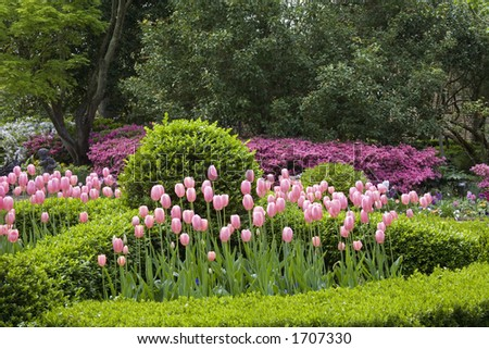 Beautiful gardens of the Nathaniel Russell House in Charleston South Carolina - stock photo