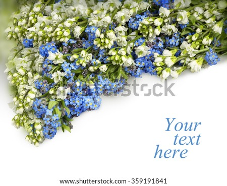 Beautiful garland of tiny springtime wildflower alpine garden: cute pale cobalt Boraginaceae, light clusters of Iberis isolated on white backdrop with clipping mask. View close-up with space for text - stock photo