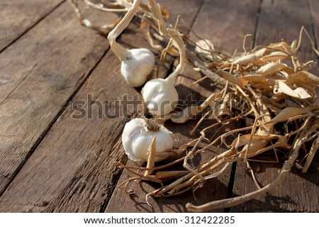 Beautiful garlic on wooden background - stock photo