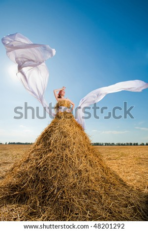 Beautiful girl in the hay with white wings - stock photo