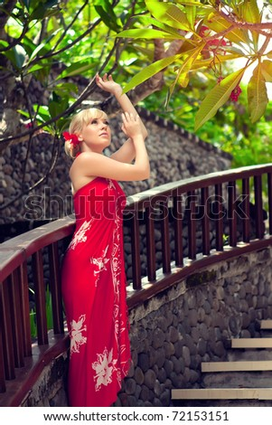 beautiful girl in the red dress on the bridge - stock photo