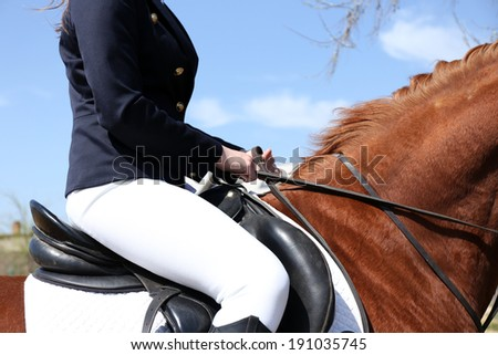 Beautiful girl with horse outdoors, close-up - stock photo
