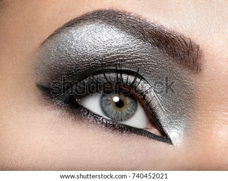 Beautiful girl with the silver  makeup of eyes. Fashion woman portrait. Closeup shot of female eye.