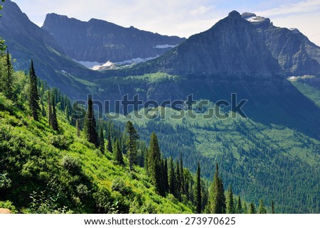 beautiful Glacier National Park summer landscape