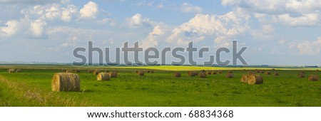 Beautiful golden hay bales on the field as background, Alberta, Canada - stock photo